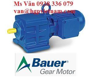 bgm-bg-series-gear-motor_1705